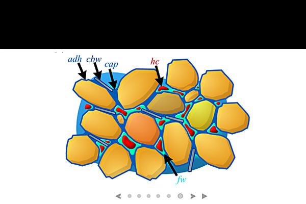 solid-fluid3A24E96F-AA35-7CC5-9E7D-0A6C4460BE99.png