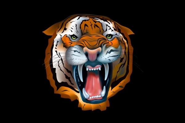 tiger075EB137-11D9-2C19-E0F5-BBDB230DE857.jpg